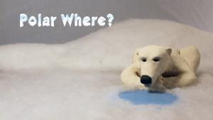 polar_where_6